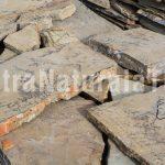 poligonal grande fosil 40 lei mp-piatra-naturala-decorativa